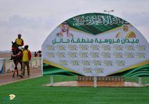 """""""ستورمي""""ينتزع كأس الأمير سلطان بن محمد الكبير بميدان فروسية حائل"""