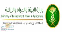 وزارة البيئة والمياه والزراعة تعمد شركة العالمية لتوظيف سعوديين لحماية مواقع الغابات والمراعي من الاحتطاب والتدمير