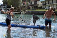 بالصور: طحالب سامة تجتاح فلوريدا والولاية تعلن الطوارئ
