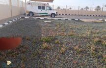 مراجعين مركز صحي القاعد يطالبون بوضع مسطحات خضراء للأنتظار
