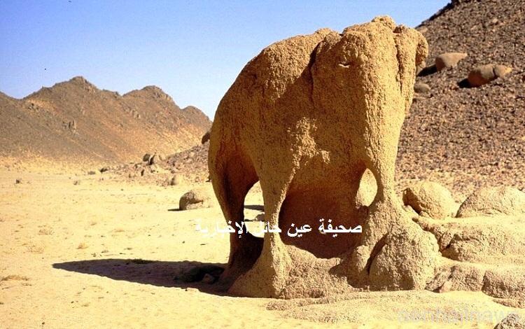 صخره على شكل حيوان ( الفيل )