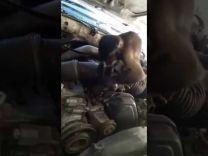 بالفيديو: قرد يعمل بمهنة ميكانيكي