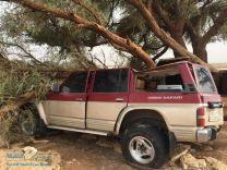 نجاة مواطن من موت محقق بعدما وقعت على مركبته شجرة عملاقة بسبب الامطار