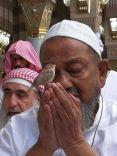 تداول واسع لـ صورة عصفور يقف على يد أحد المصلين في صلاة التراويح!