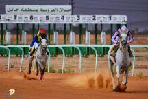 ميدان الفروسية بحائل يقيم حفل سباقه الـ 25 على كأس الإمارة غدًا