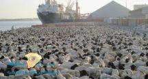 """""""البيئة"""" وصول قرابة 28 ألف رأس من المواشي قادمة من رومانيا وإثيوبيا وجيبوتي إلى المملكة"""